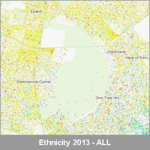 Ethnicity Auckland ALL ProductImage 2013