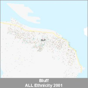 Ethnicity Bluff ALL ProductImage 2001