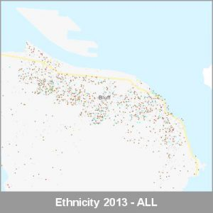 Ethnicity Bluff ALL ProductImage 2013