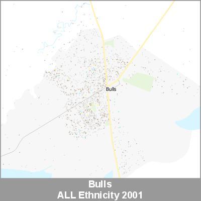 Ethnicity Bulls ALL ProductImage 2001