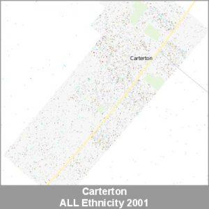Ethnicity Carterton ALL ProductImage 2001