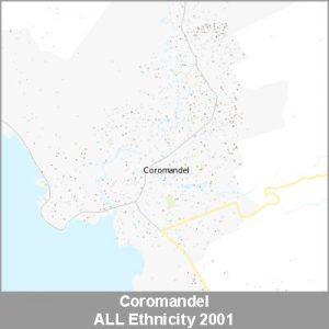 Ethnicity Coromandel ALL ProductImage 2001